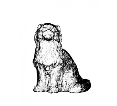 Кот  (080)