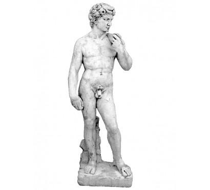 Скульптура Давид  (179)