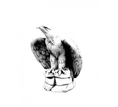 Орел  (222)