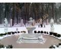 Бассейн с фонтаном, скульптуры на тумбах, коттедж в с. Перемога